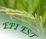 EPI-EST